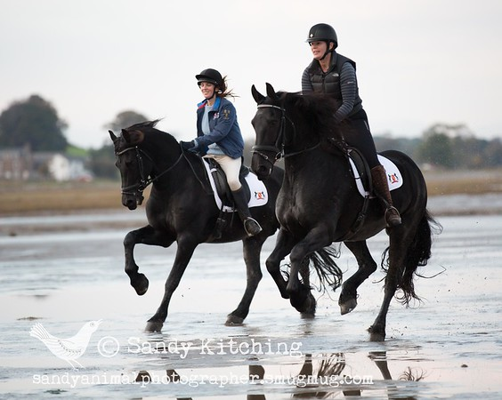 Emily & Alison Friesian beach ride Oct 2015