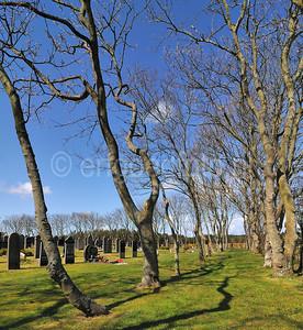 Ameland - Nes - Alg. begraafplaats