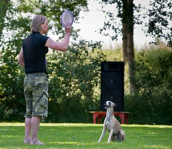 Dog Frisbee Wedstrijd Hoorn 2012