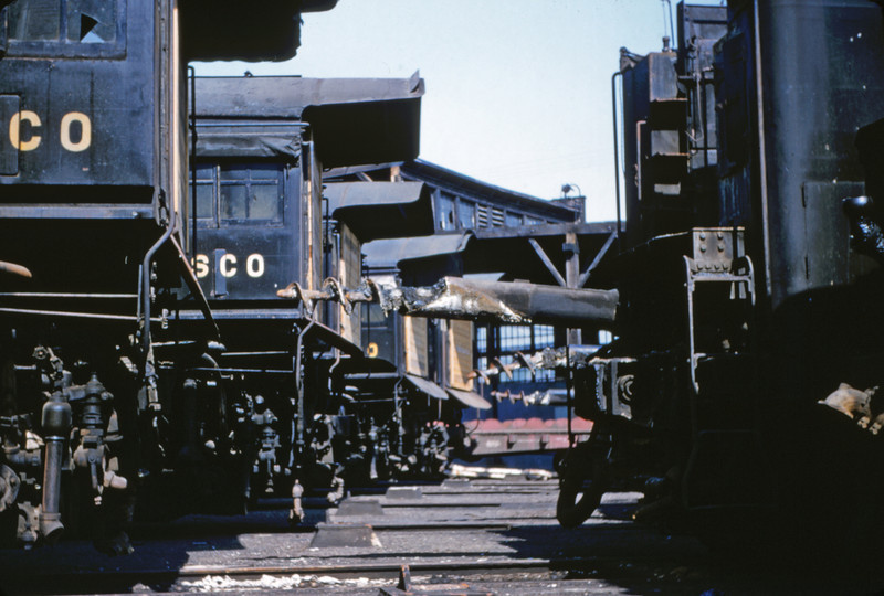 SLSF 41 - Aug 29 1954 - steam engines at Lindenwood MO