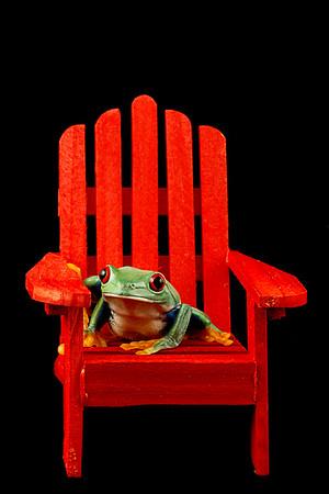 Frogscapes169_Cuchara_2909_012913_173516_5DM3L