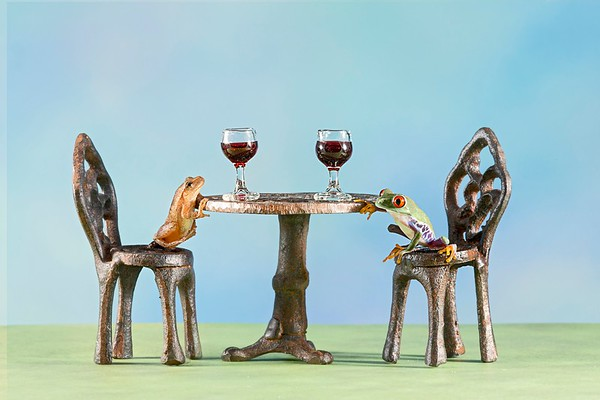 Frogscapes122_Cuchara_9935b_071913_225339_5DM3L two frogs wine