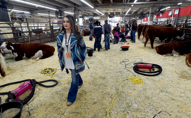 Longmont Folks Help Run the NW Stock Show