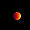 Blood Moon from Mississippi