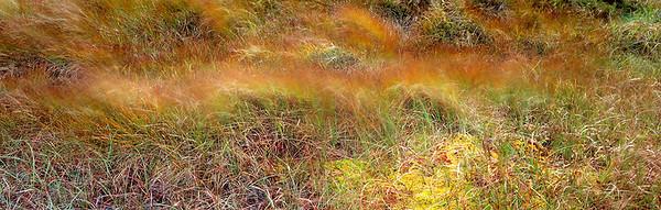 blanket bog, Harris, Outer Hebrides