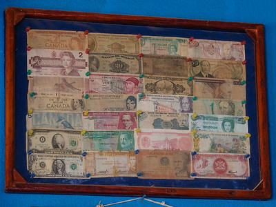 Framed money collection on the bar wall representing visitors from various countries.