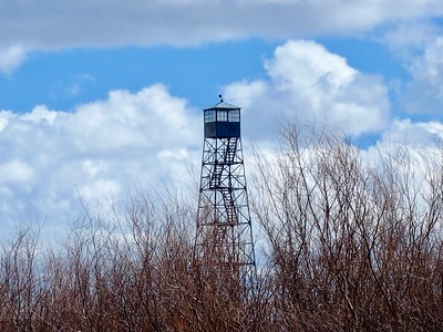 The fire tower at the P Ranch is now used only by roosting vultures.