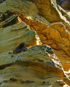 sandstone detail, Boulby, Yorkshire coast