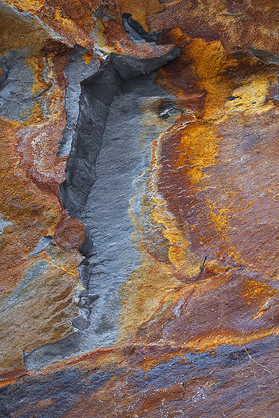 shale and iron, Runswick Bay, Yorkshire Coast, England