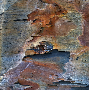 shale abstract V, Saltwick Bay