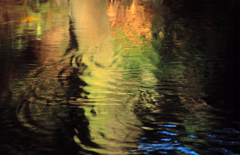 River Derwent # III North York Moors