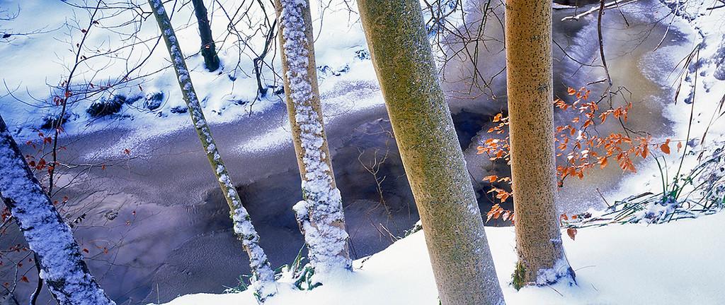 winter count, May Beck, North York Moors