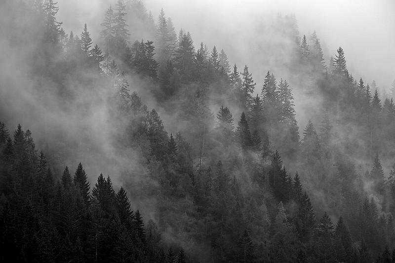 Bois des Chosalets, Chamonix, France