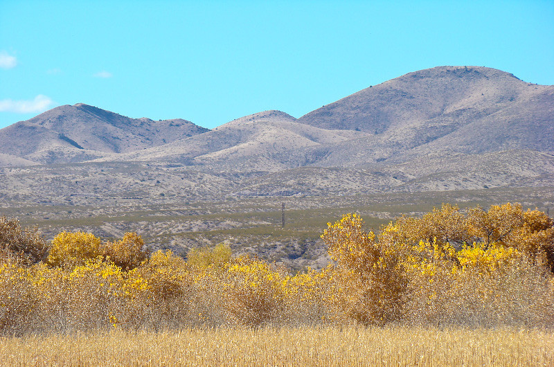 Autumn on the Rio Grande