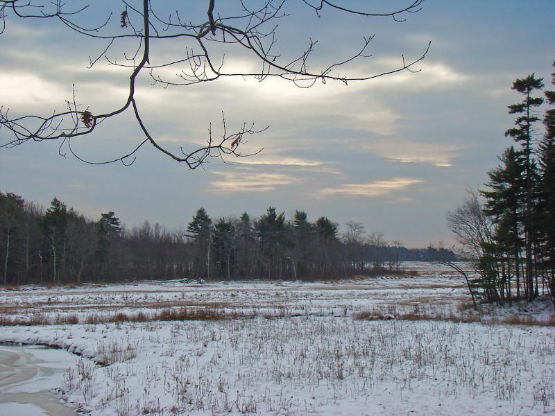 Winter view...Rachel Carson