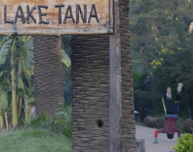 A hop, skip, jump and headstand (or an hour's flight to the literal minded) and we are beside Lake Tana