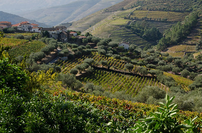 three nights in the hilly Douro above Pinhao, a four hour drive to the north,