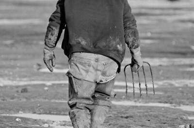 2. Clam digging, January 2013, Scarborough, Maine.
