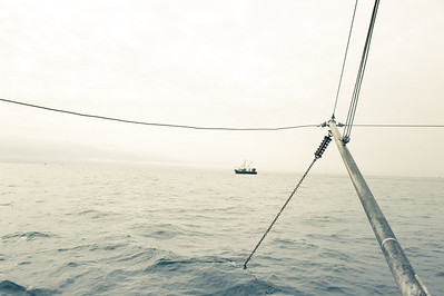 14. Shrimping with Proctor Wells, Gulf of Maine, February 2013.