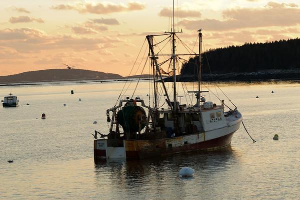Maine's working waterfront