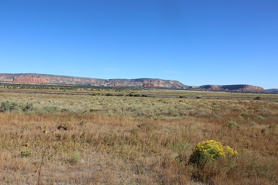 The Painted Desert and the Petrified Forest
