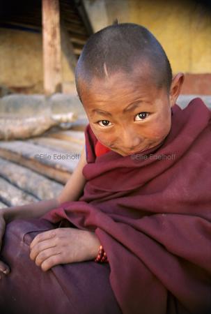 Mischievous Wisdom – Tibet