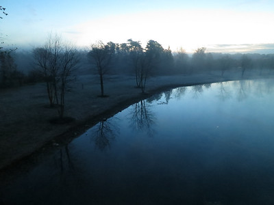 Early Morning at Janelia Farms