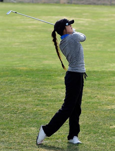 Golf_CG11991