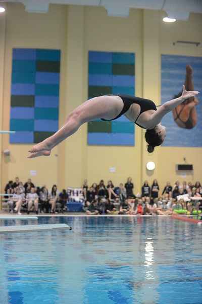 Loveland's Nikola Hanekorn competes during the diving finals at Saturdays' finals of the Front Range League Championships at Veterans Memorial Aquatics Center in Thornton. (Mike Brohard/Loveland Reporter-Herald)