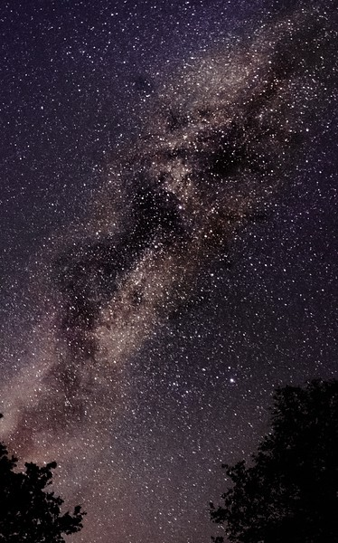 Our neighborhood, the milkyway