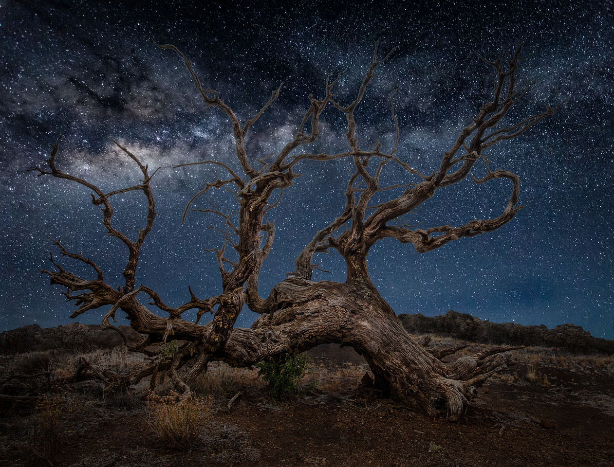 Night on Mauna Kea