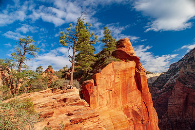 Outcropping along the West Rim Trail, Zion National Park