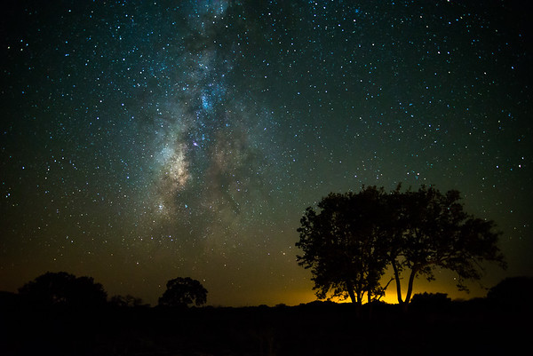 Milky Way on the Horizon