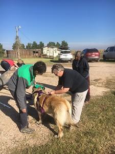 Patti helps Lynn adjust Addie's harness.  Sherrell looks on.