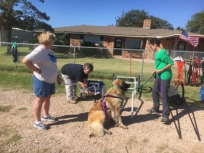 Patti and Kathy explain cart construction to Lynn.