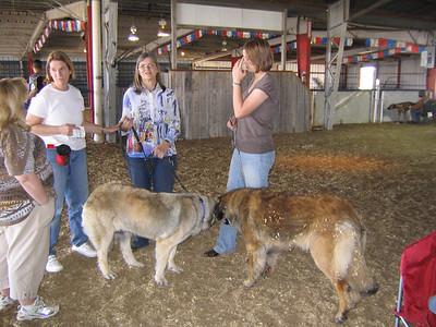 Wendy Jones, Mary Norwood, Waltraut Zieher, and me with Ondra and Mekka in 2007