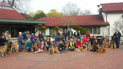 2015 Leonberger National Speciality in Frankenmuth