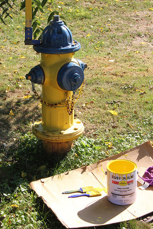 Victor Fire Hydrants