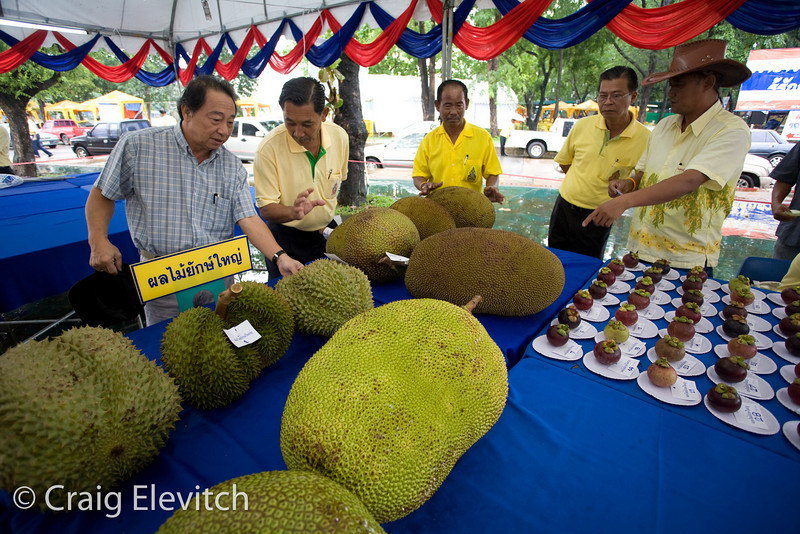 """Entries in the """"Biggest Fruit"""" contest."""
