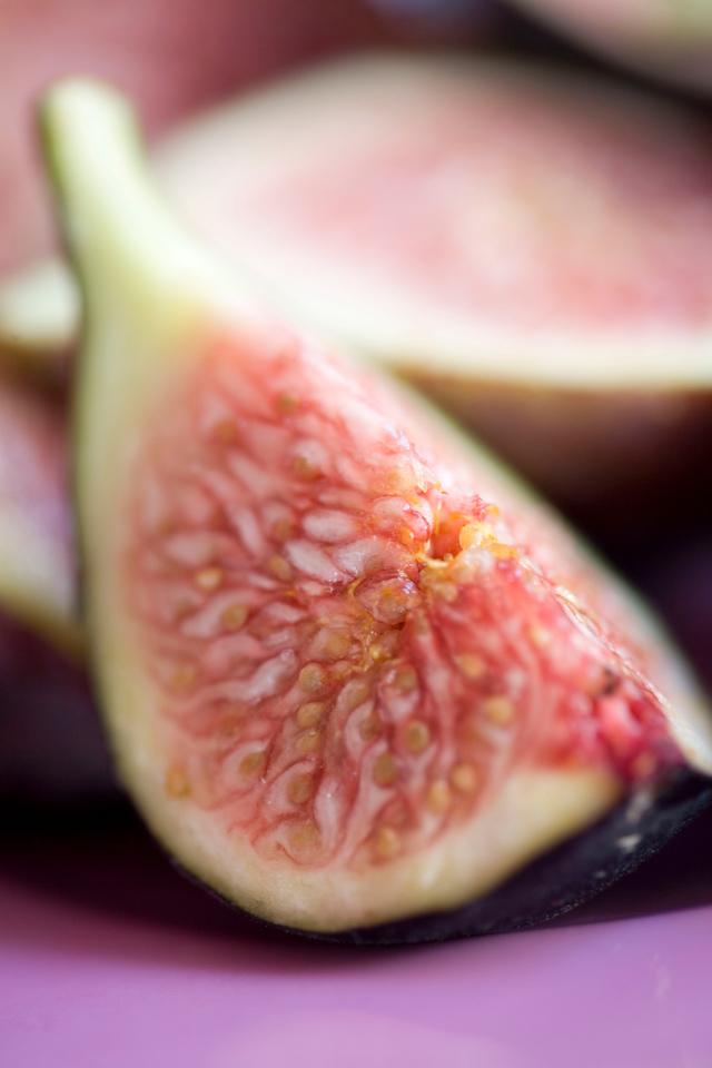 Fig (ficus carica)