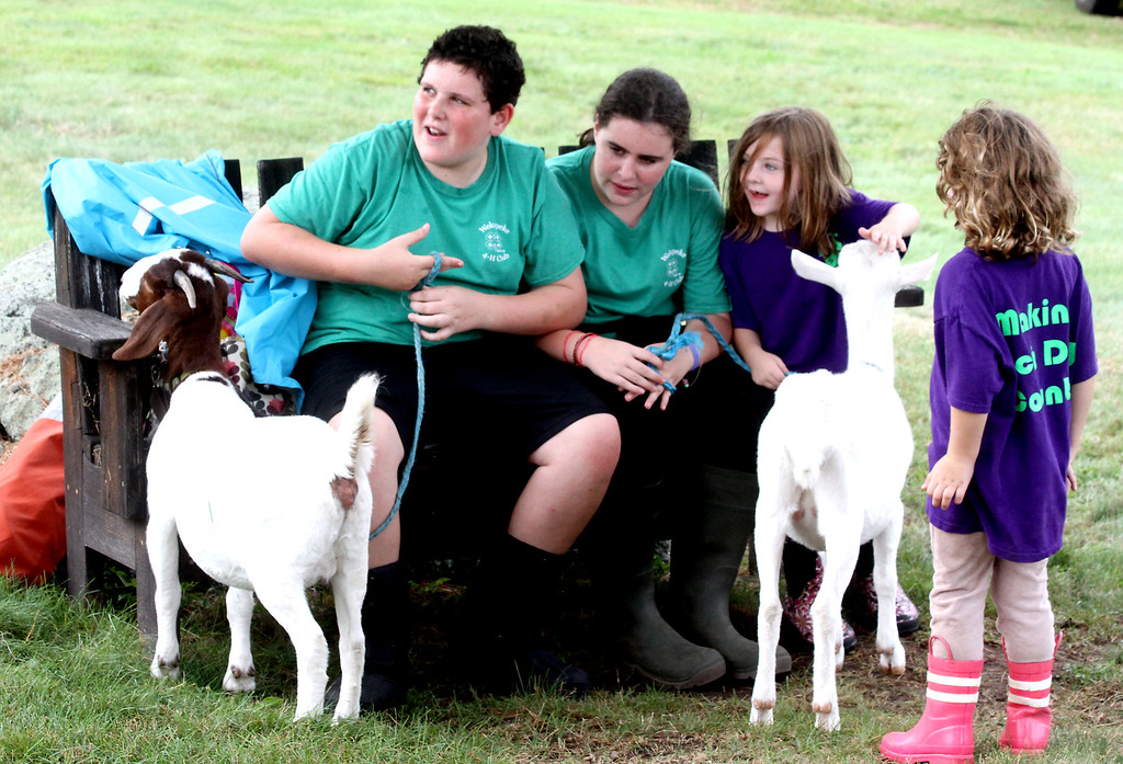 . Kids from the Wekepeke 4-H Club of Lancester, interact with the goats, Fiona and Cora,at Fruitlands Harvest Festival, kids L-R, Michael Arata,12, his sister Meaghan Arata, 10 from Harvard, and sisters Braegh Mallette,6 and Maeve Mallette, 4 from Lancester. Nashoba Valley Voice Photo by David H. Brow