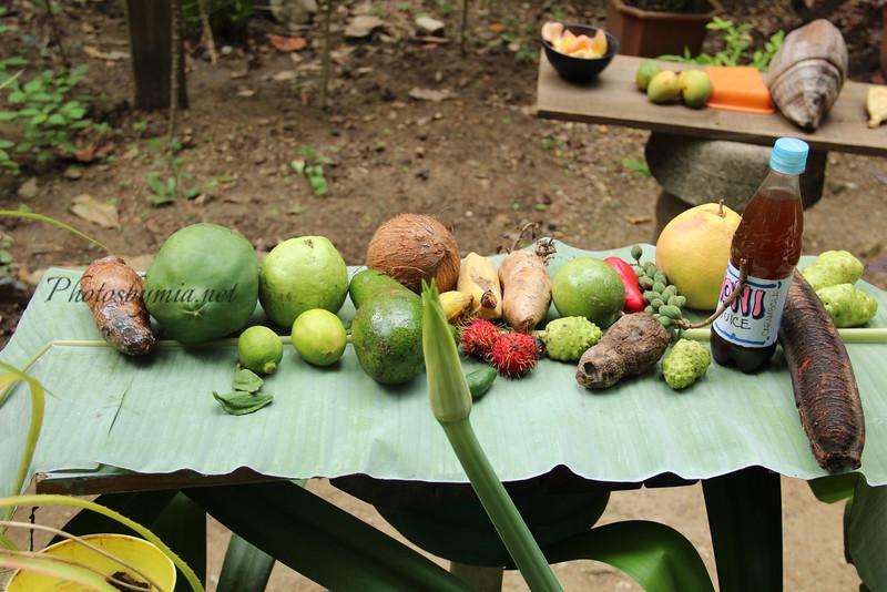 Fruits of Roatan