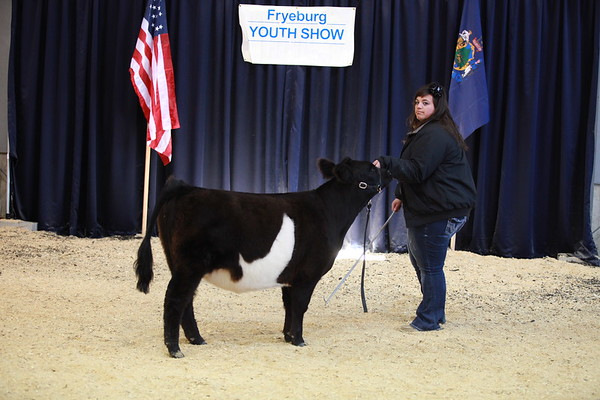 Fryeburg Youth Show 2012  - Day Two