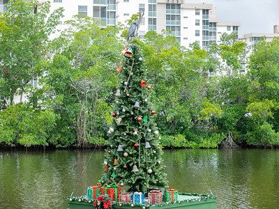 Bonita Beach Christmas tree.