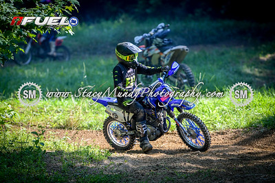 SMP_2015