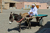 An arab man with his donkey and cart offer rides at the Heritage Center in Fujairah, UAE.