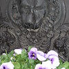 Cheryl's Lion Planter and Pansies on Long Ridge Road