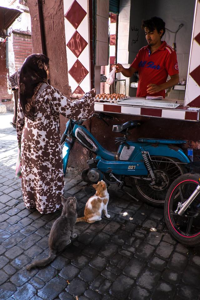 Marrakech 2014-3373-108