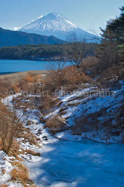 A frozen river leads to a lake near Mt. Fuji Fuji Five Lakes, Yamanashi Prefecture, Japan