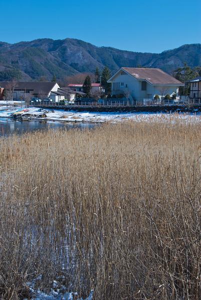 Frozen lake and grassland in Japan Fuji Five Lakes, Yamanashi Prefecture, Japan